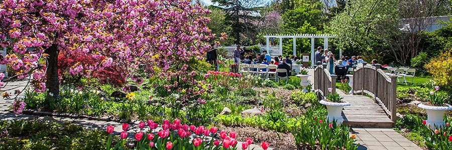 Garden Wedding Showcase