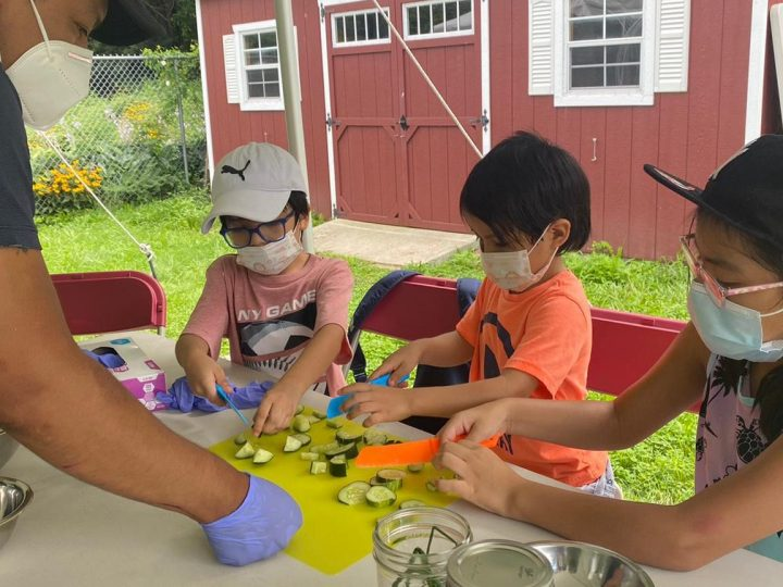 """Plants to Plate"" at Queens Botanical Garden"
