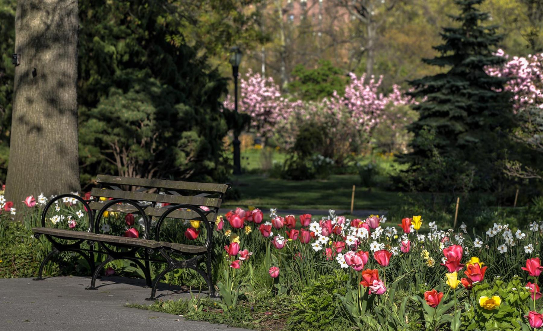 Adoptions Queens Botanical Garden