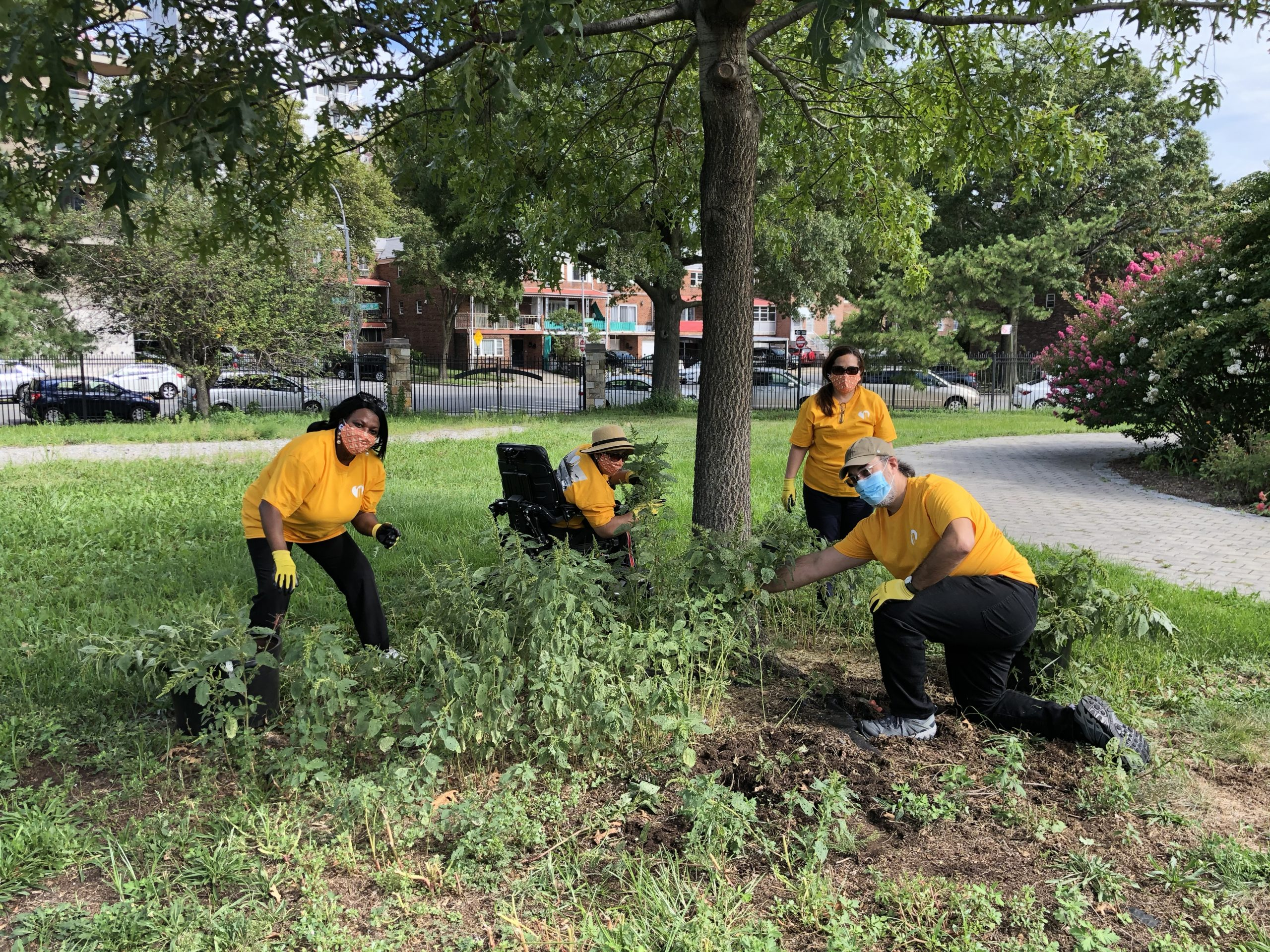 Port Authority Volunteers outside surrounding a tree wearing masks, wearing yellow shirts