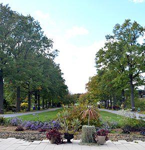 Botanical Gardens Queens Membership Garden Ftempo
