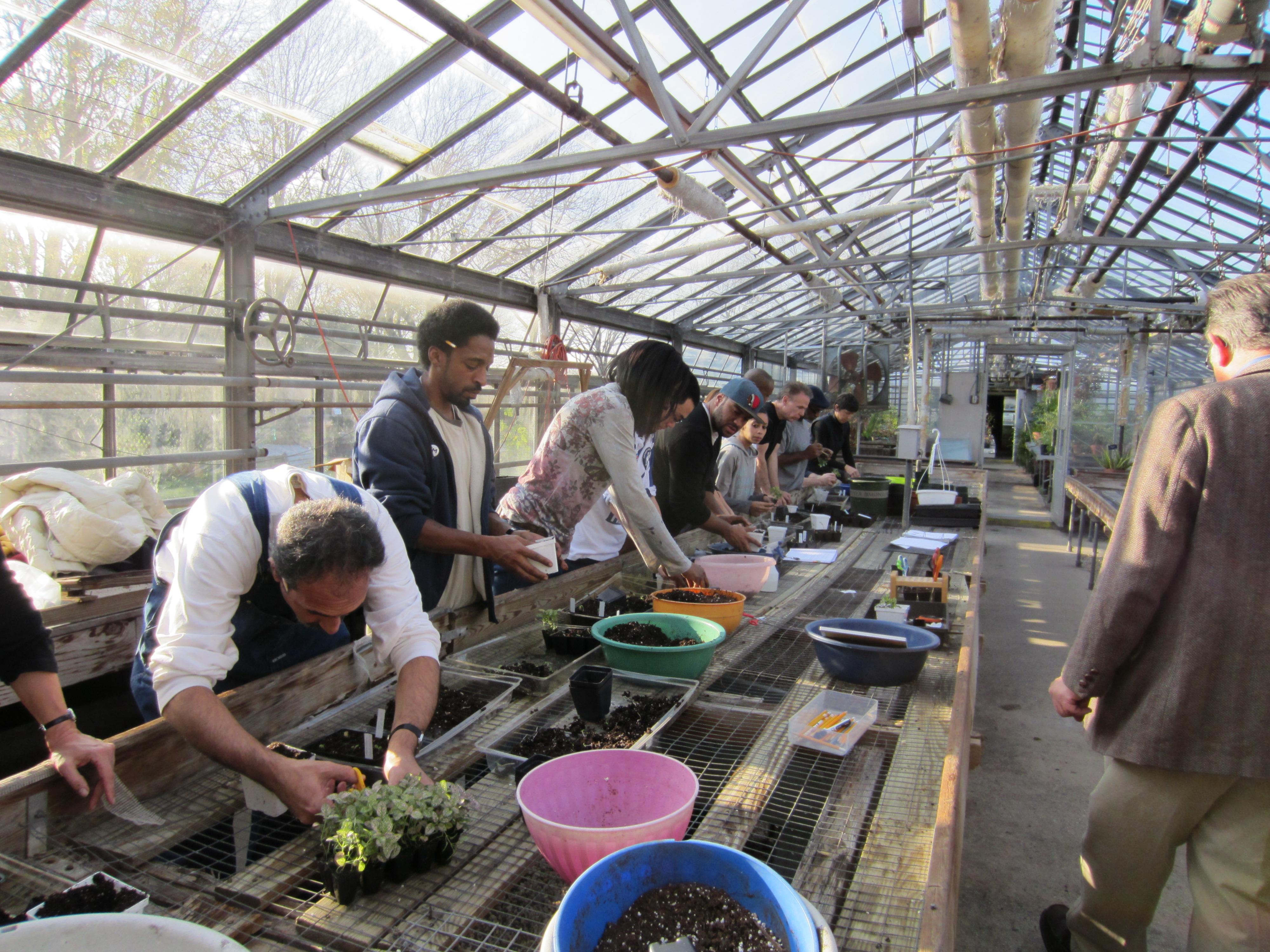 Teacher Learning Queens Botanical Garden