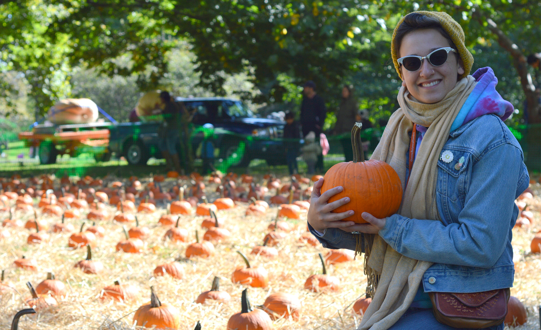 harvest festival ideas for adults