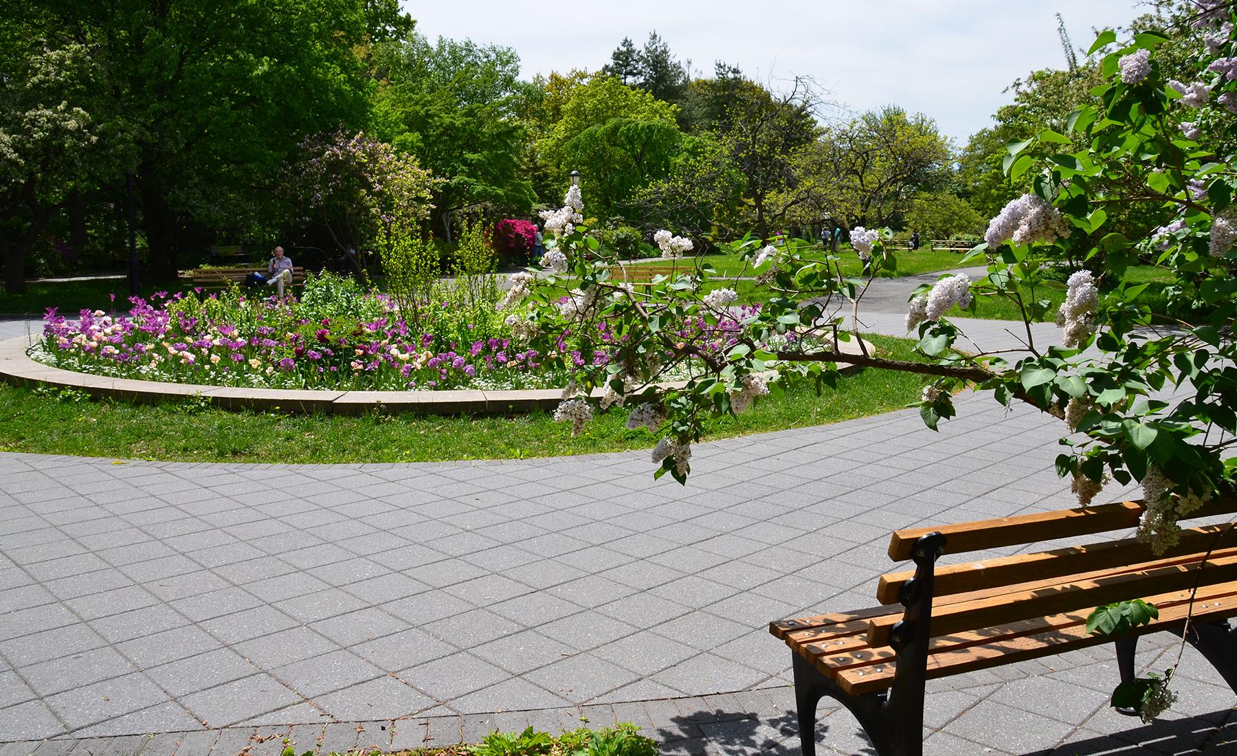 Sustainable Landscapes-Pathways - Queens Botanical Garden