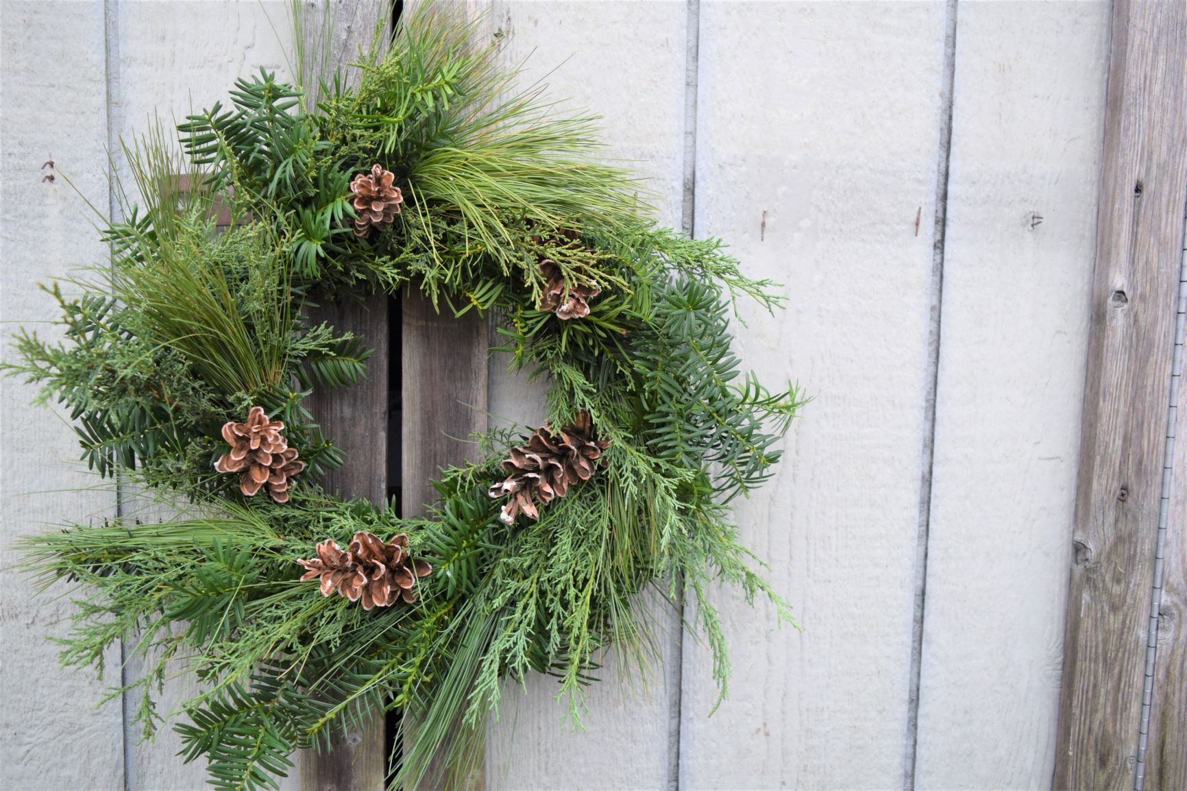 Holiday Wreath Making Workshop Sold Out Queens Botanical Garden